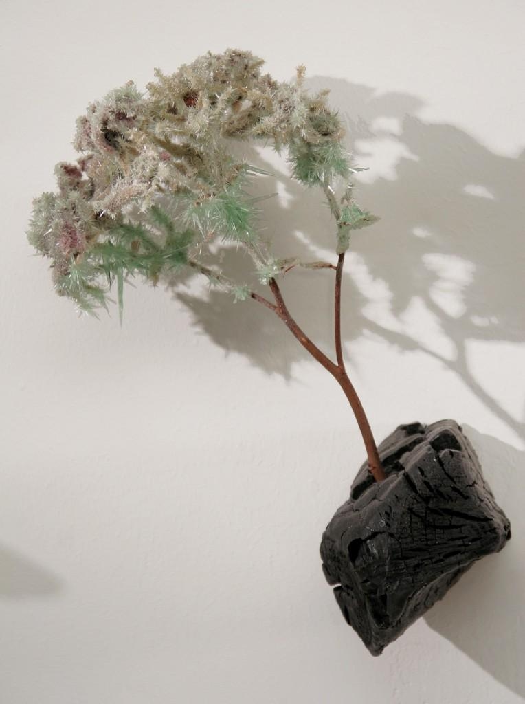'MEIN ROSENGARTEN', 2004, Bienenwachs, Edelstahl, Rosen, verkohltes  Buchenholz, Phosphatkristallisationen, 300x200cm
